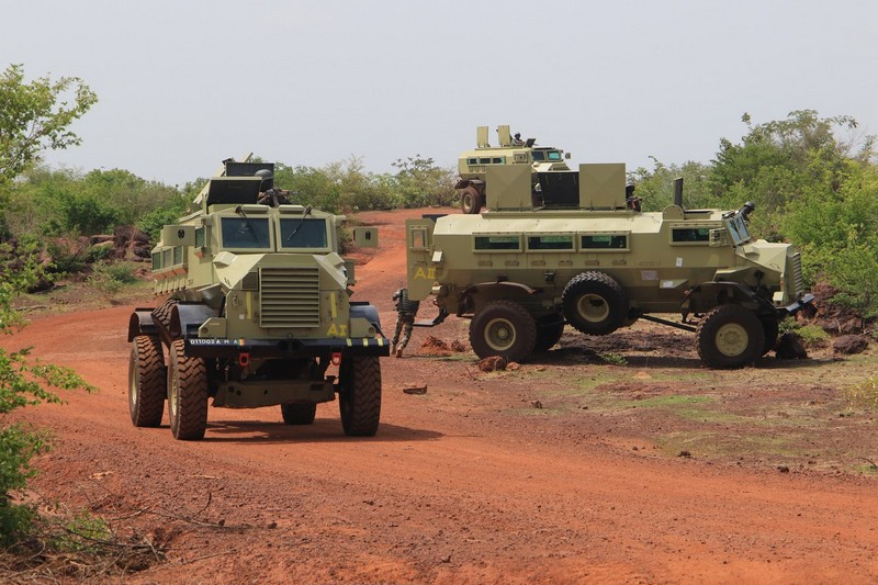 Malian Armed Forces: Ready for Action
